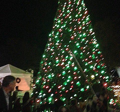 Christmas Tree Lighting November 23RD