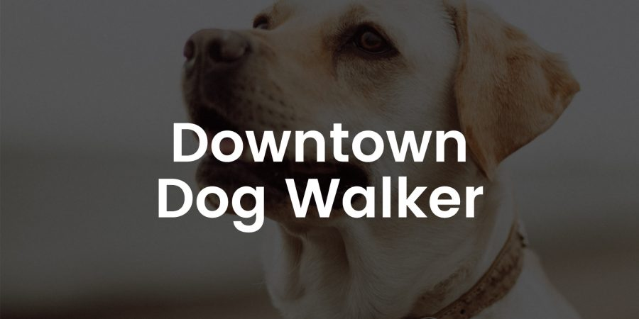 Downtown Dog Walker